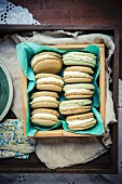 Matcha Macarons with white chocolate ganache