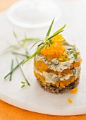 Dried apricot tartare with blue cheese and Scandinavian bread