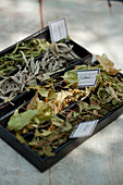 Assortment of herb teas