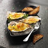 Gratinierte Austern mit Krebsfleisch