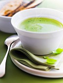 Cream of courgette and basil soup