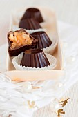 Schokoladenkonfekt mit Trockenfrüchten