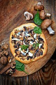 Mushroom, blue cheese and walnut pizzas