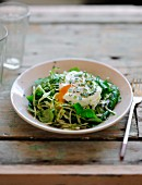 White cabbage and corn lettuce salad with a poached egg
