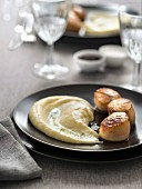 Grilled scallops and vanilla-flavored pureed parsnips