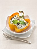 Yellow pepper stuffed with sheep's milk cheese and basil
