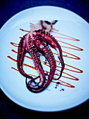 Grilled octopus with fresh herbs and tomato puree