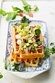 Vegetarian savoury waffle with avocado and radishes