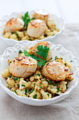 Pan-fried scallops with cauliflower and parsley fricassée