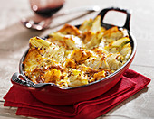 Fennel and tuna gratin