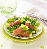 Raw ham and mozzarella rolls on a bed of mixed lettuce salad