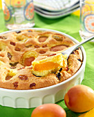 Apricot pudding