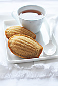 Teatime with Madeleines