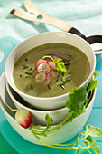 Cream of Swiss chard soup with radishes