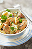 Potato salad with mussels and curry