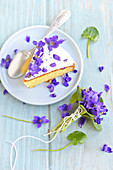 Slice of violet cake