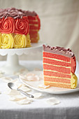 Sliced three-colored Paradise cake