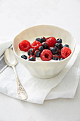 Bowl of fromage blanc and summer fruit