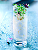 Glass of Faisselle with honey and spices,sprout salad