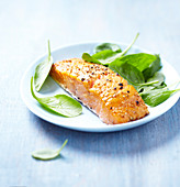 Spicy piece of salmon
