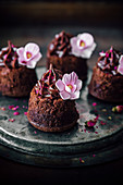 Little Brownie Cakes With Chocolate Hazelnut Frosting