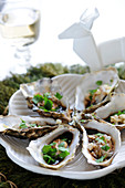 Warm oysters with ginger and coriander