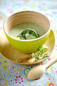 Green asparagus soup
