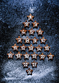 Chocolate shortbread stars Advent calendar Christmas tree