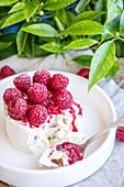 Ice Cream Nougat With Raspberries
