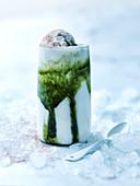 Matcha Kefir Iced Latte