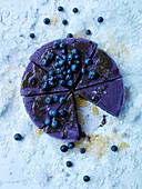 Frozen Blueberry Cake