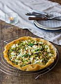 Knusprige Brickteigtarte mit Zucchini, Ziegenfrischkäse und gerösteten Pinienkernen