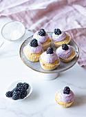 Zitronen-Cupcakes mit Frischkäse und Brombeer-Glasur