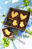 Easter Chocolate Cake Decorated With Chick-Shaped Biscuits