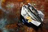 Zwei frische Makrelen auf Zeitungspapier