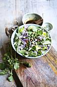 Watercress salad with roquefort, avocado, radish, cucumber and tomato