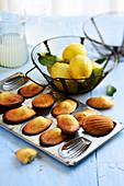 Zitrone-Madeleines in der Backform