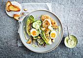 Caesar Salad mit Hühnerbrust, gegrillten Salatherzen, Gurke und Ei