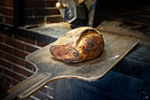 Ein frisch gebackener Brotlaib auf Holzschieber vor Holzofen