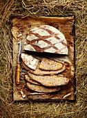 Aprikosen-Haselnuss-Brot