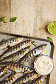Sardines grilled with rosemary