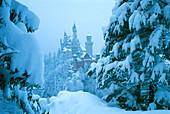 Neuschwanstein Castle in the winter, Allgaeu, Bavaria, Germany