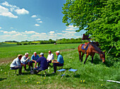 Fathers Day trip with horses, near Scheggerott Schleswig-Holstein, Germany