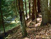 Hiker on tour, National park Eifel, Wuestebachtal, Germany