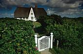 Bauernhaus bei Morsum, Sylt, Schleswig-Holstein, Deutschland