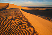 Sand dune, Grand Erg Oriental, Sahara, Algeria, Africa