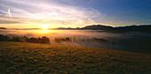 Sunrise above misty landscape, Upper Bavaria, Germany