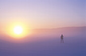 A person in a foggy winter landscape at sunset, Sweden, Europe