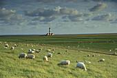 Lighthouse of Westerheversand, Eiderstedt, Schleswig-Holstein, Germany