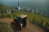 Tractor with view into the valley, Mosel, Rhineland Palatinate, Germany